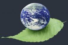 دانلود پاورپوینت ارزیابی اثرات توسعه بر محیط زیست